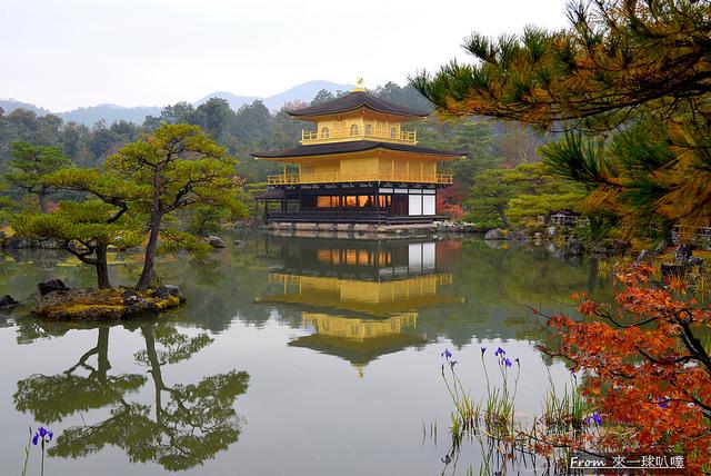 京都金閣寺雪金閣(夢幻京都冬季美景)