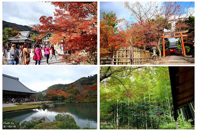 京都嵐山一日遊行程(20個嵐山景點、5種嵐山交通方式、大街美食)