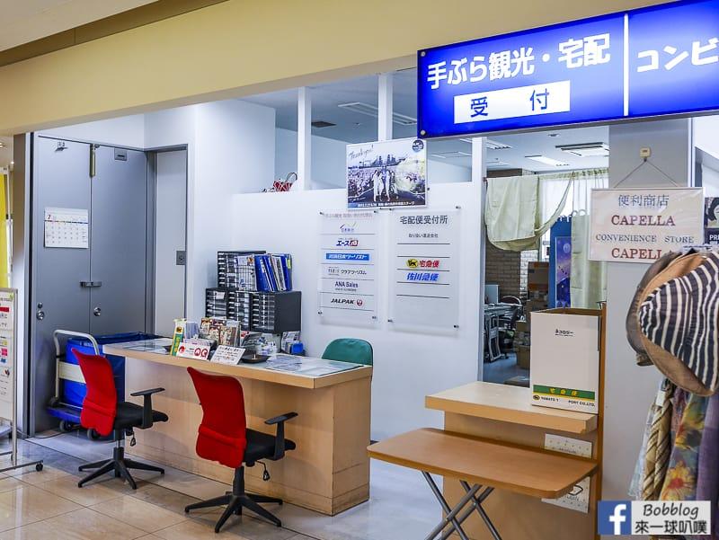 Hakodate airport depart 10