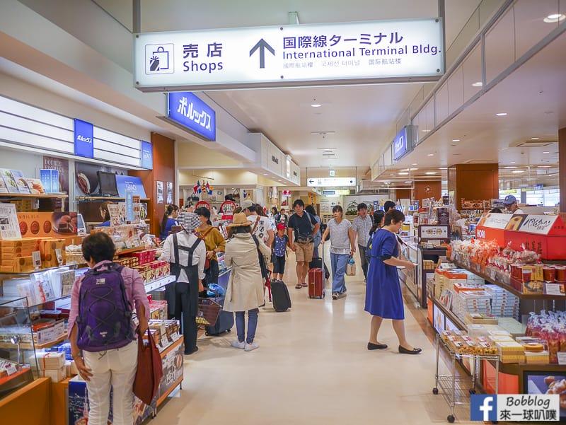 Hakodate airport depart 21
