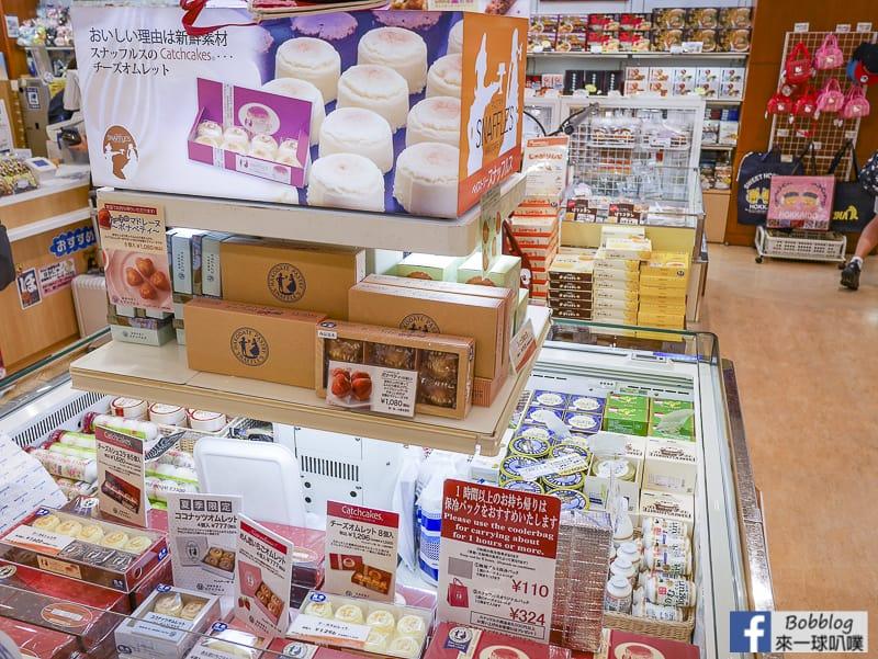 Hakodate airport depart 24