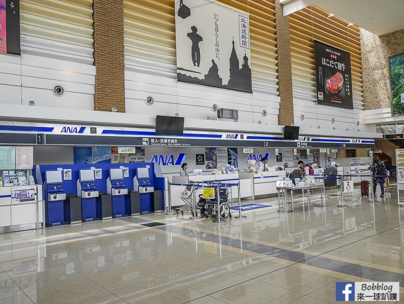 Hakodate airport depart 7