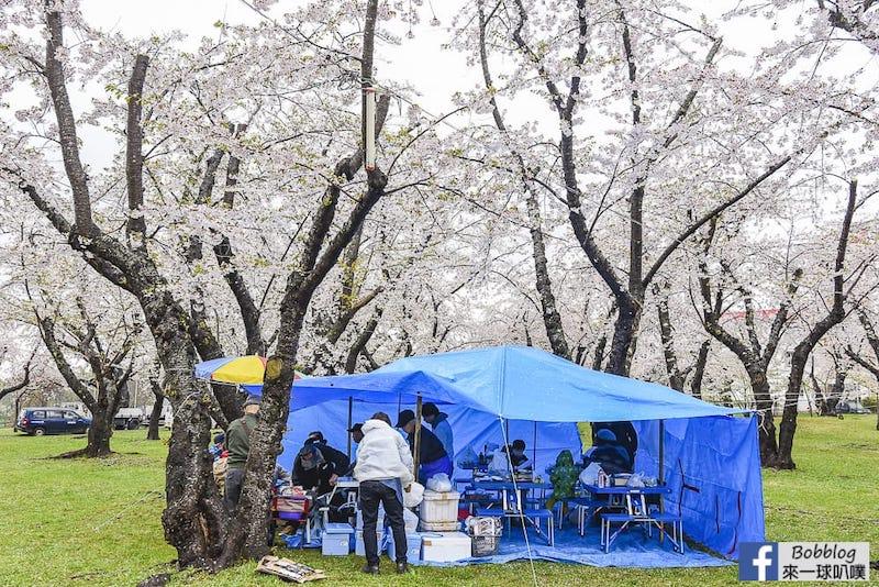 Aobagaoka Park 15