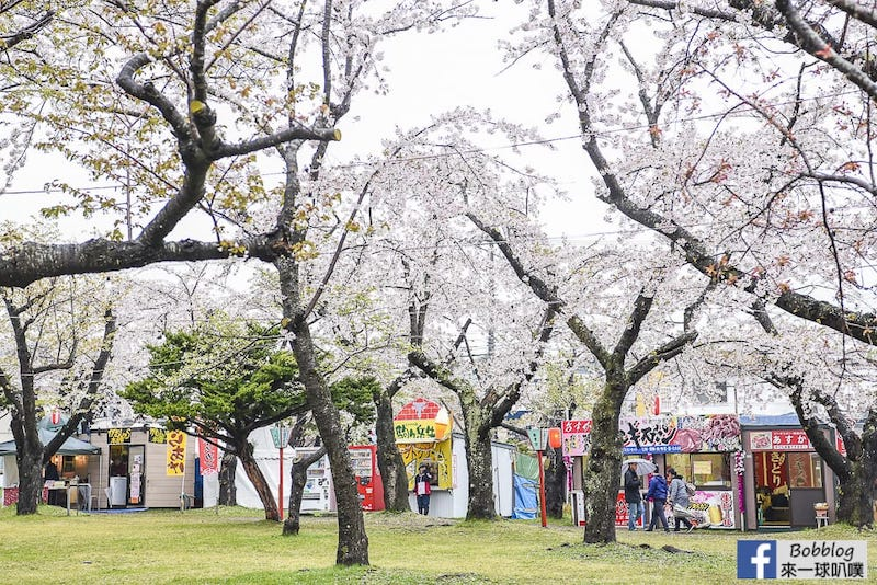Aobagaoka Park 20
