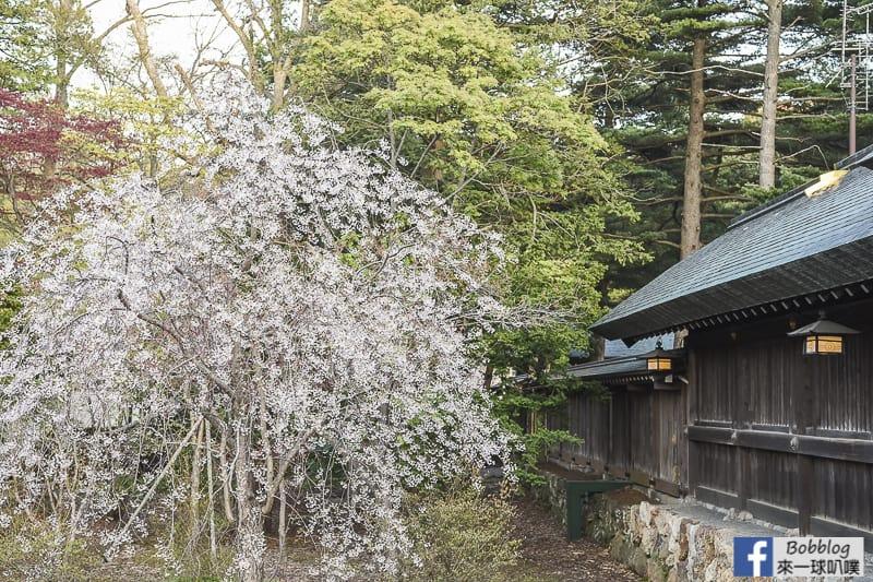 Hokkaido Shrine 26