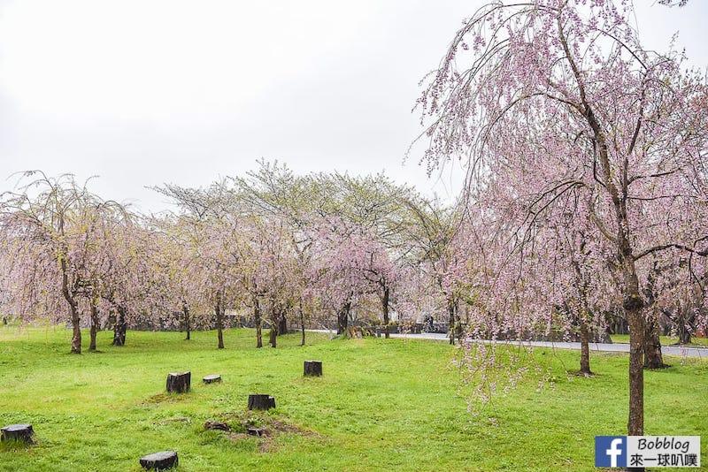 Morimachi Oniushi Park 11
