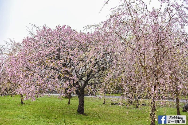 Morimachi Oniushi Park 18
