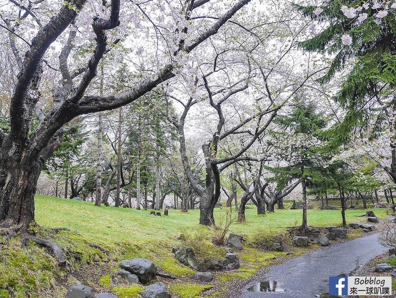 Morimachi Oniushi Park 2