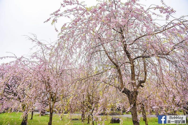 Morimachi Oniushi Park 23