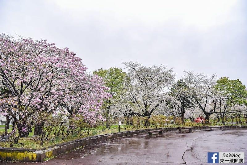 Morimachi Oniushi Park 4