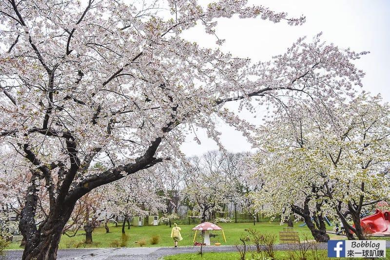 Morimachi Oniushi Park 8