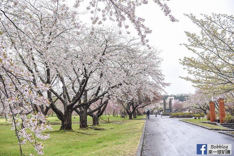 Morimachi Oniushi Park 9
