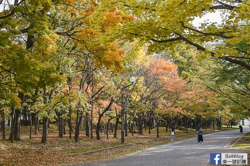 Nakajima-Park-maple-62