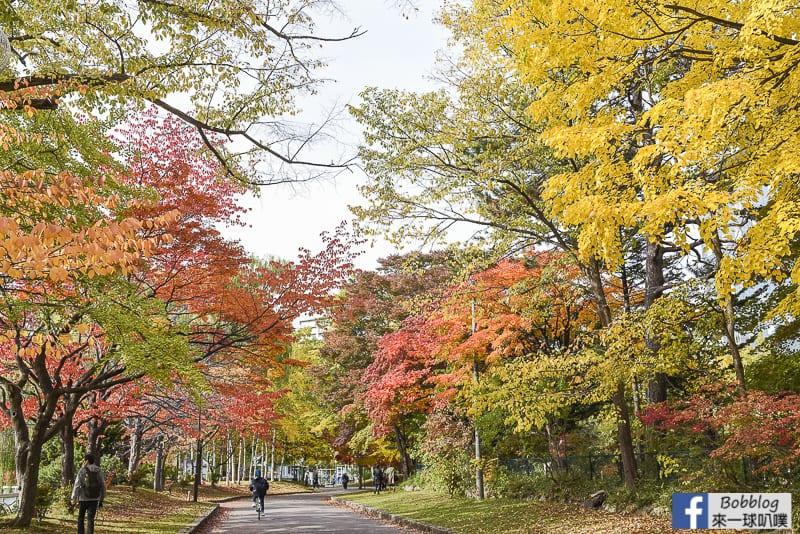 Nakajima-Park-maple-63