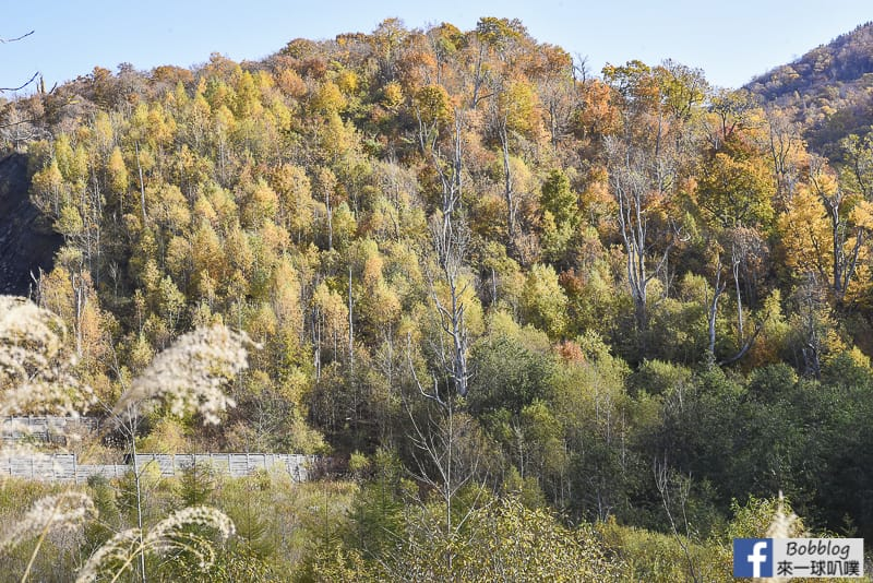 Nishiyama-Crater-Walking-Trail-54