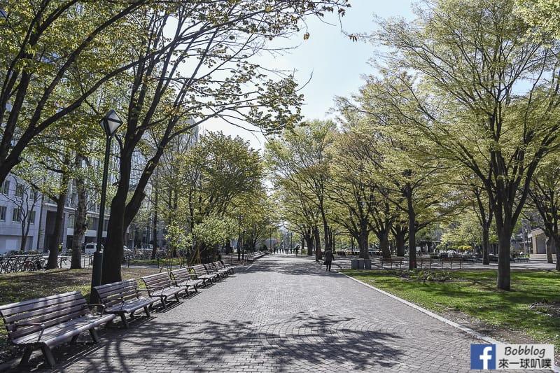 Odori Park 13