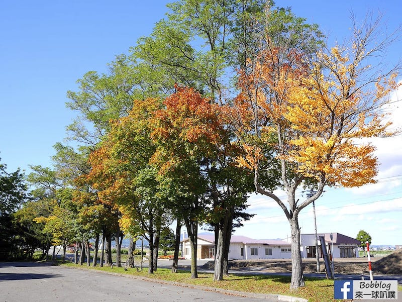 Torinuma Park 33