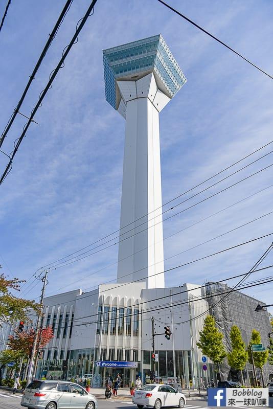 goryokaku-tower-4