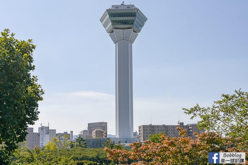 goryokaku-tower-57