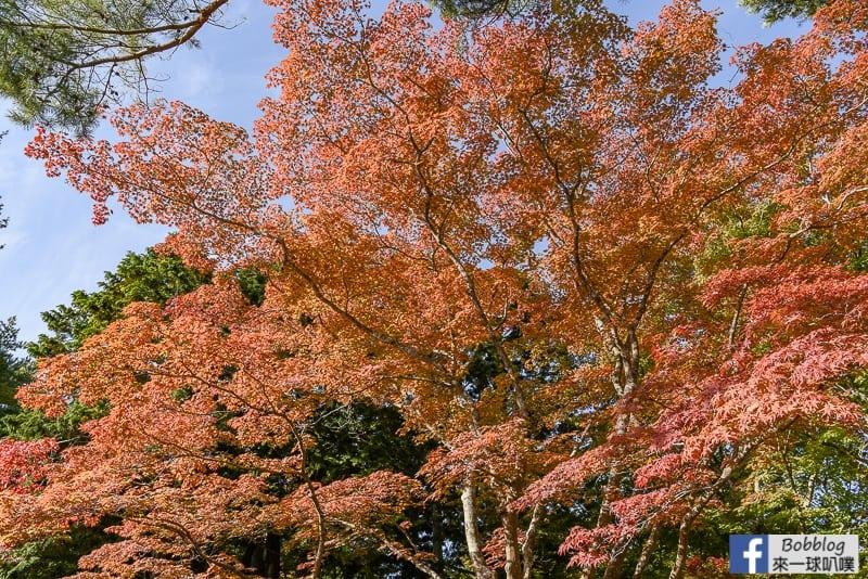 miharashi-park-kosetsuen-18