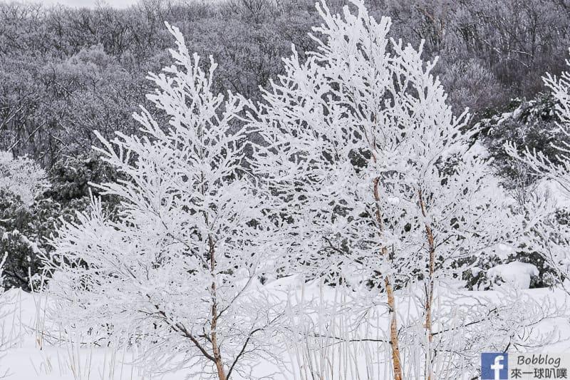 Mount Iozan winter 45