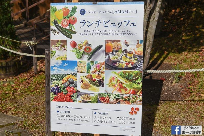 Shikotsuko maple 19