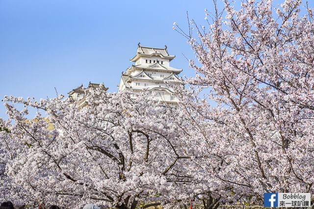 Himeji-Castle-105