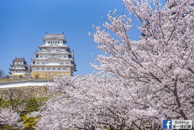 Himeji-Castle-26