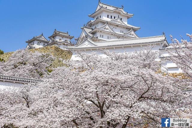 Himeji-Castle-52