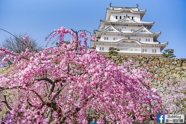 Himeji-Castle-82