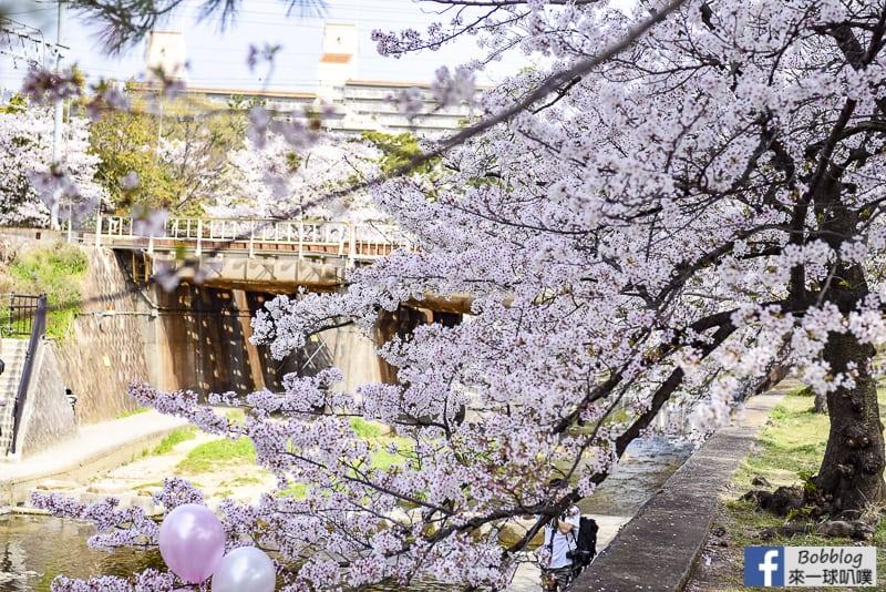 Shukugawa-Park-5