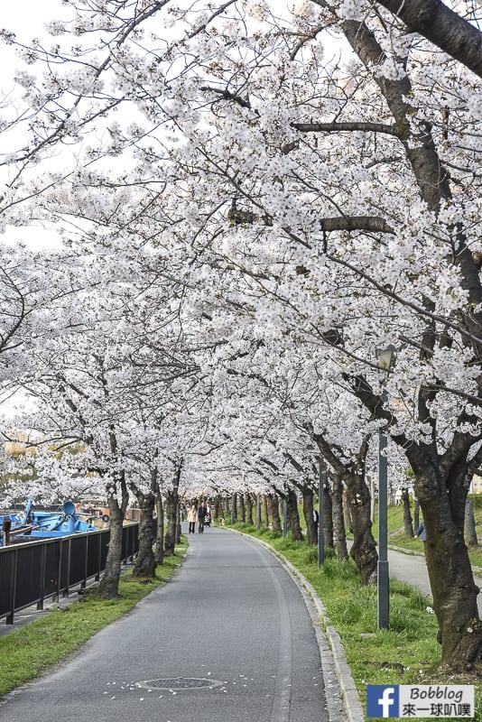 Kema Sakuranomiya Park-15