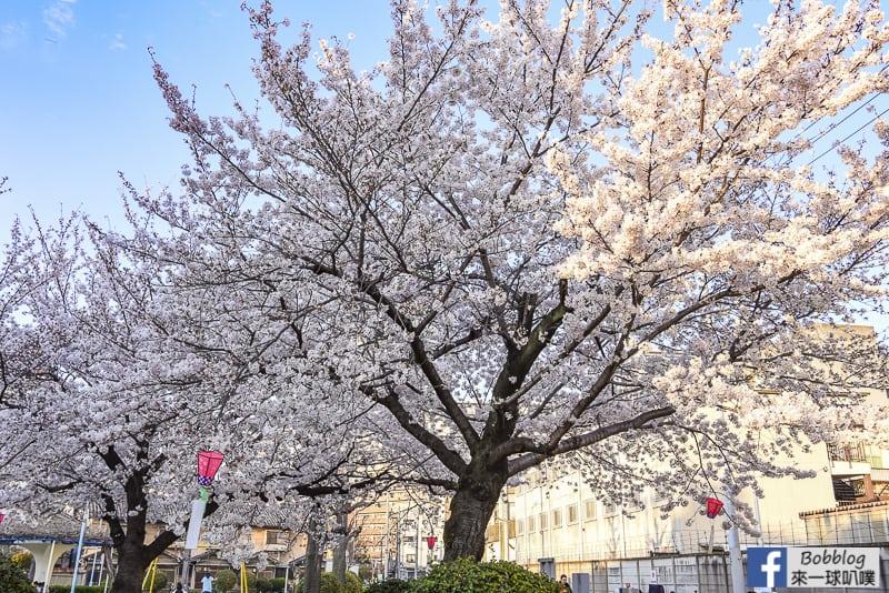 Kema Sakuranomiya Park-2
