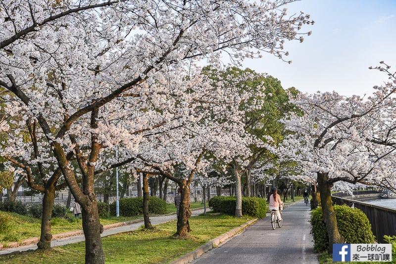 Kema Sakuranomiya Park-27