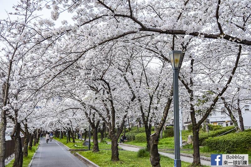 Kema Sakuranomiya Park-36