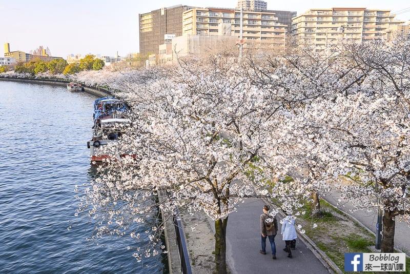 Kema Sakuranomiya Park-4
