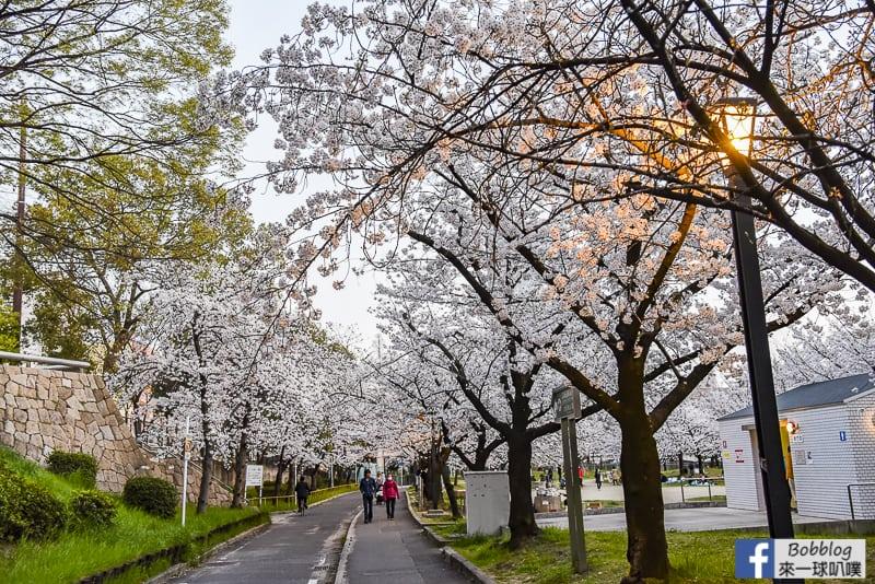 Kema Sakuranomiya Park-40