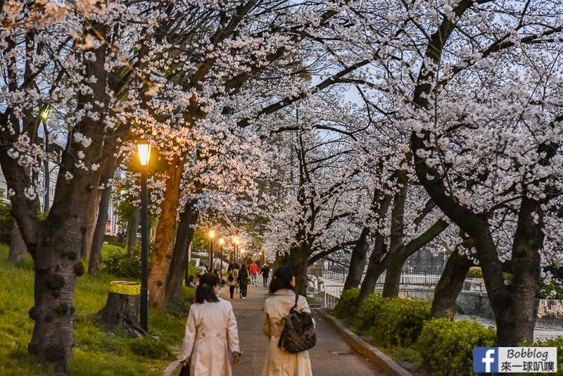 Kema Sakuranomiya Park-45