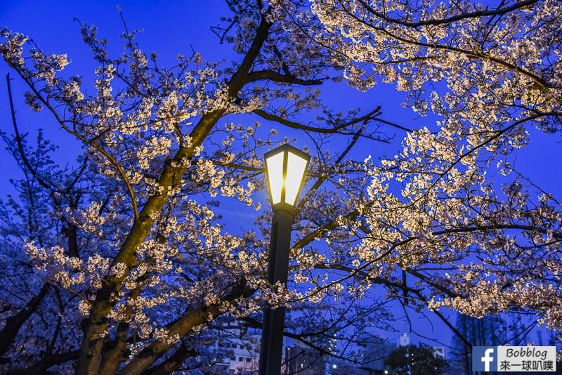 Kema Sakuranomiya Park-48
