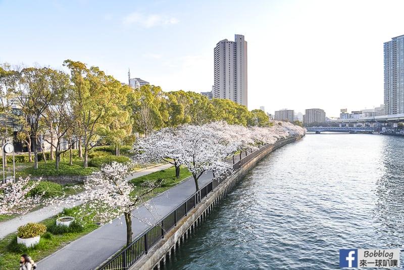 Kema Sakuranomiya Park-5