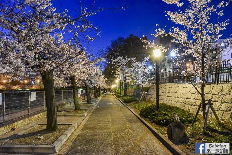 Kema Sakuranomiya Park-54