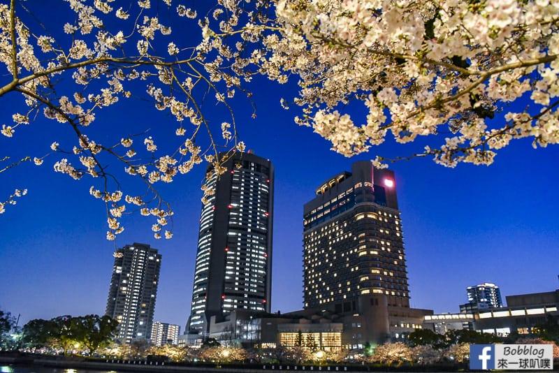 Kema Sakuranomiya Park-60