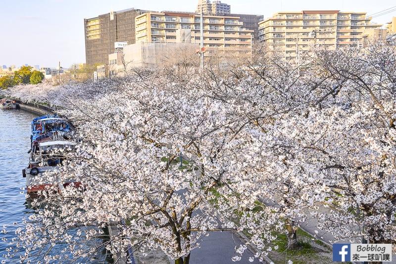 Kema Sakuranomiya Park-7
