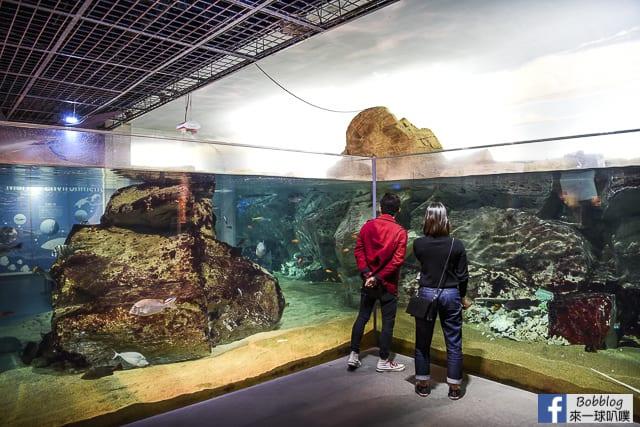 Kujukushima-Aquarium-Umikirara-23