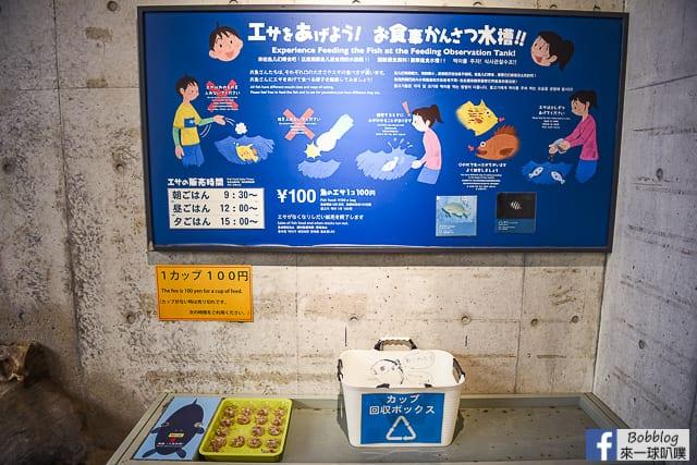 Kujukushima-Aquarium-Umikirara-28