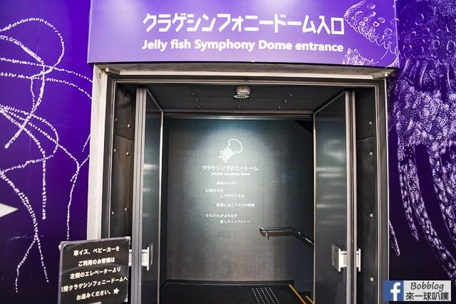 Kujukushima-Aquarium-Umikirara-62