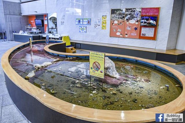 Kujukushima-Aquarium-Umikirara-78