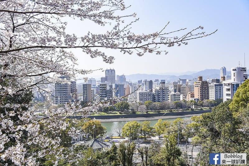 [廣島景點]比治山公園櫻花(1300株櫻花,有夜櫻)