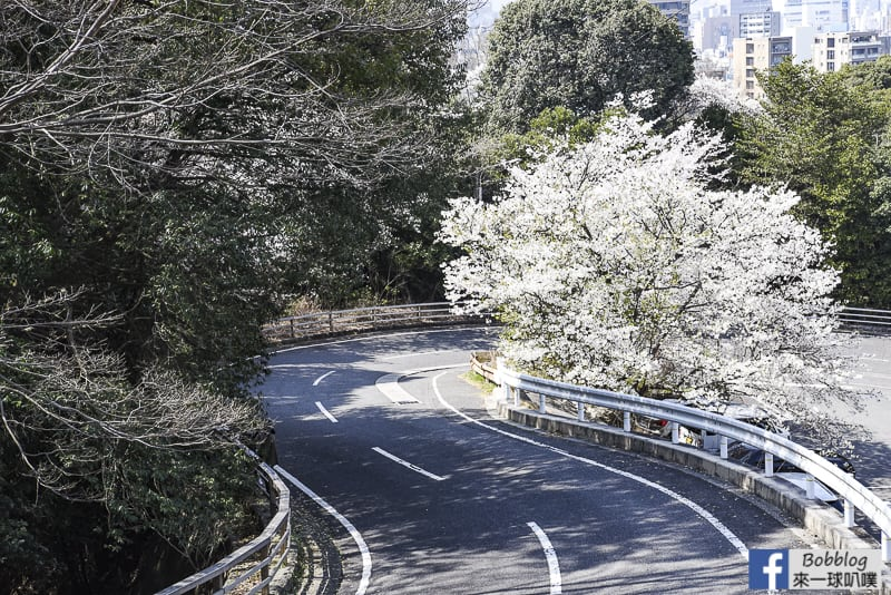 Hijiyama Park-9