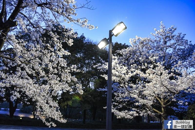 Hiroshima Peace Memorial Park-40